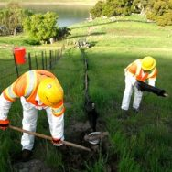Calaveras Dam Replacement Project, Alameda County, CA