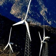 Shiloh Wind Turbine Bird Mortality Assessment, Solano County, CA