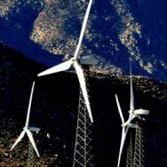 Shiloh Wind Turbine Bird Mortality Assessment, Solano County, CA